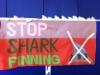 shark-sewing-banner