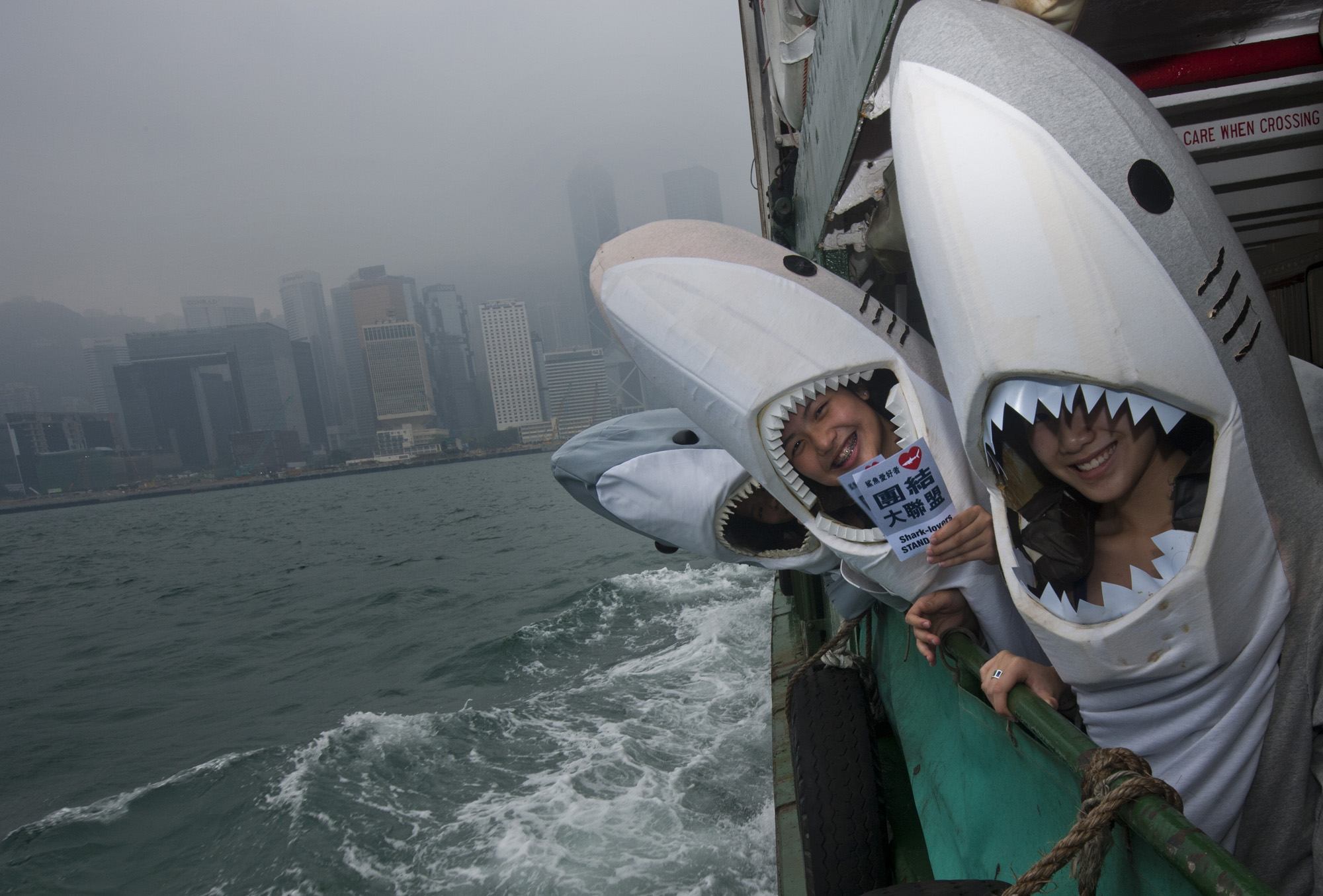 The Hong Kong shark foundation sharkettes posed for a picture on the star ferry after a freezemob at Avenue of Stars in Hong Kong, 15 May 2011.The HKSF is calling for all Hong Kong's resident to say no to shark fin soup. Around 73 million sharks are being killed each year for their fins to satisfy Asian demand for the infamous luxury culinary dish. EPA/Paul Hilton